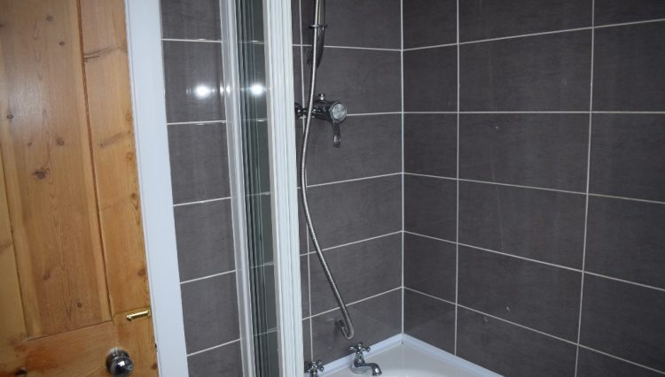 5 LADYSMITH ROAD BATHROOM (2)